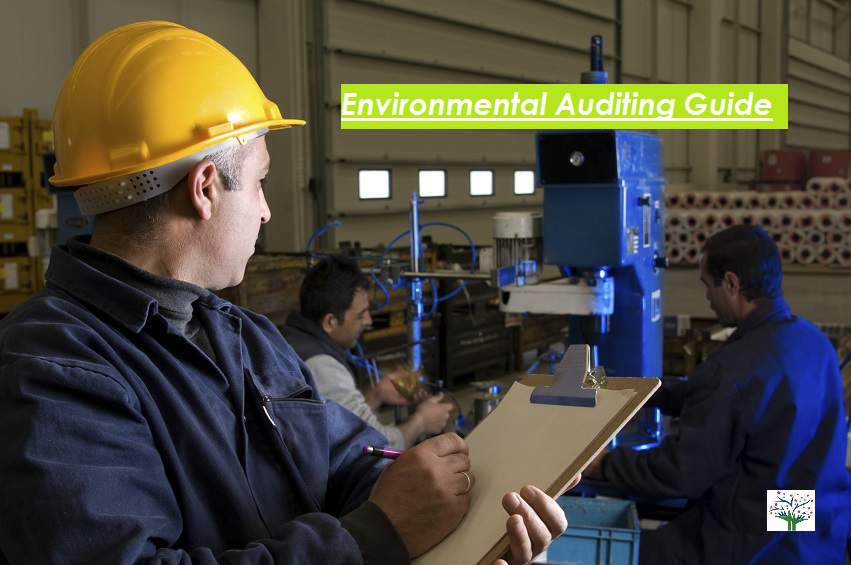 environmental audit process