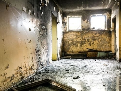 Mold in home and office - Perfect Pollucon Services